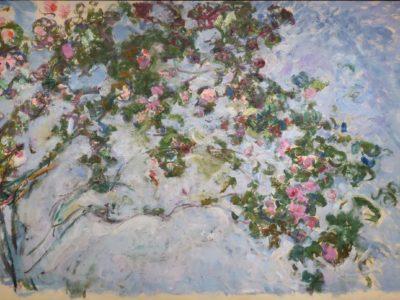 La Plus Belle Rose du Monde