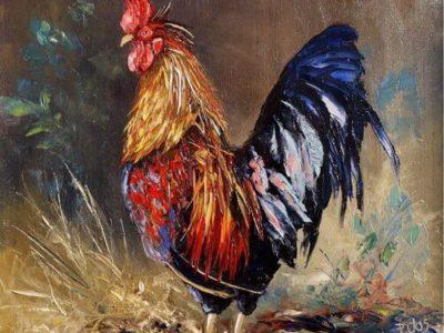 Un Coq Chanta