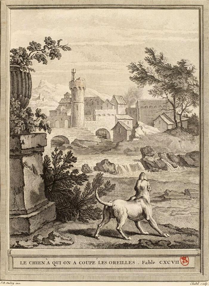 Le Chien à qui on a Coupé Les Oreilles de Jean de La Fontaine dans Les Fables - Gravure par Pierre Quentin Chedel d'après un dessin de Jean-Baptiste Oudry - 1759