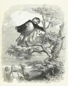 Les Deux Perroquets, Le Roi et Son Fils de Jean de La Fontaine dans Les Fables - Illustration de Grandville - 1840