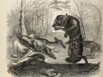 Le Loup et Le Chasseur