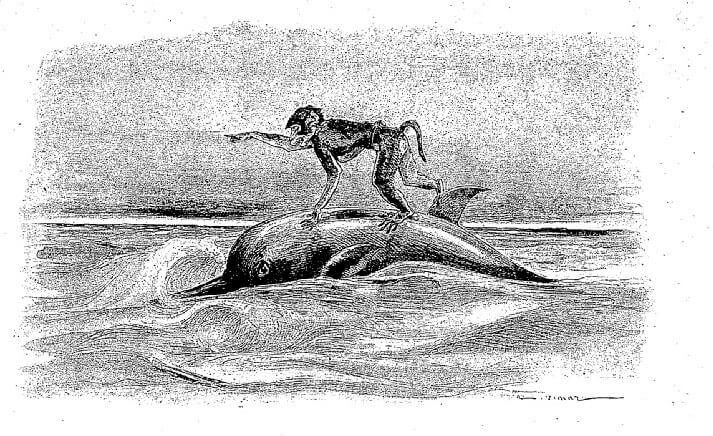 Le Singe et Le Dauphin de Jean de La Fontaine dans Les Fables - Illustration de Auguste Vimar - 1897