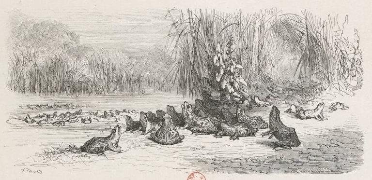 Le Soleil et Les Grenouilles de Jean de La Fontaine dans Les Fables - Illustration de Gustave Doré - BNF - 2 - 1876